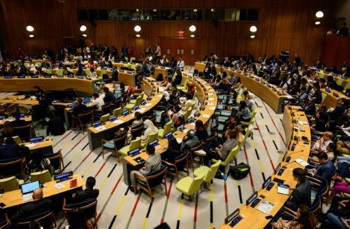 Young activists take part in the first UN Youth Climate Summit on September 21