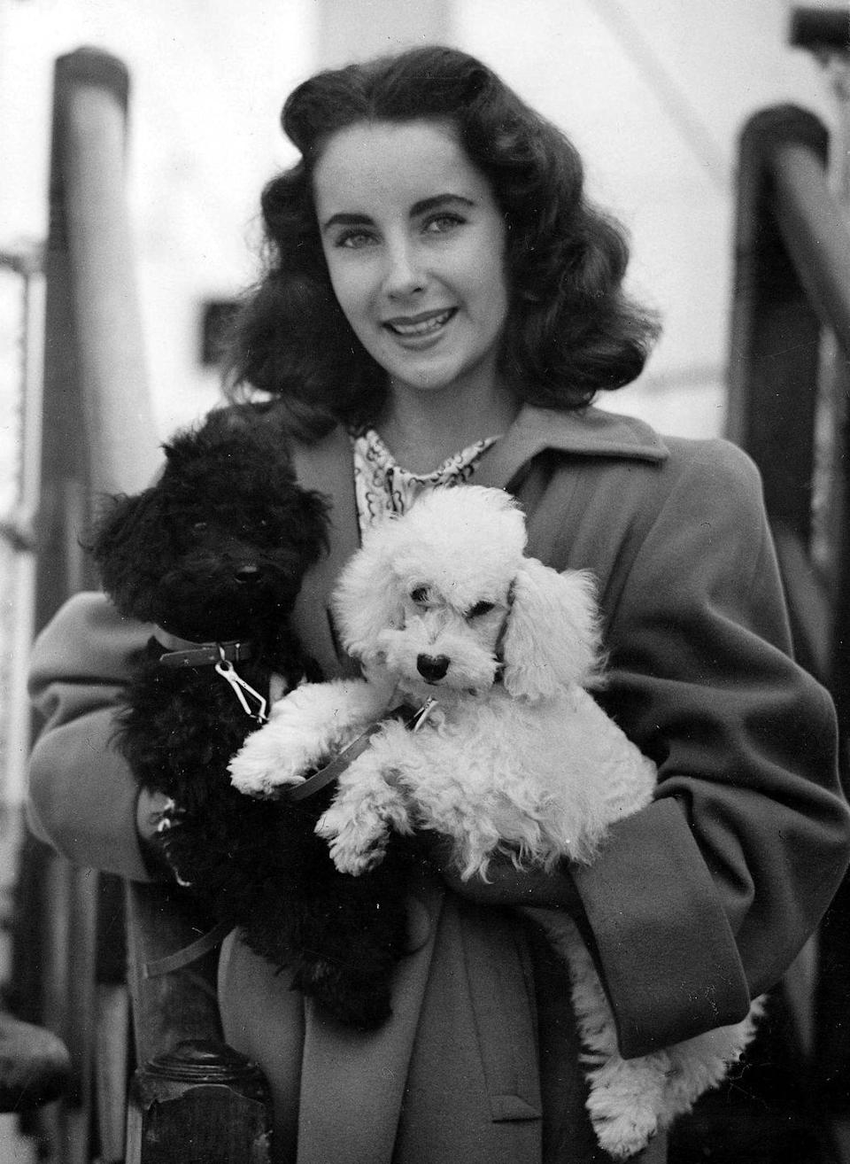 """<p>The actress is photographed on the deck of the """"SS Mary"""" departing from Southampton, England with her pet poodles, one of which was named Teeny. </p>"""