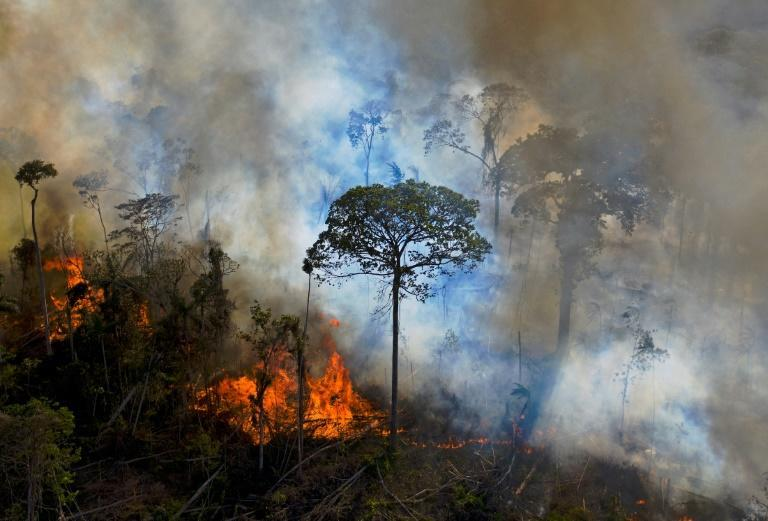 Smoke rises from an illegally lit fire in Amazon rainforest reserve, south of Novo Progresso in Para state, Brazil in August 2020