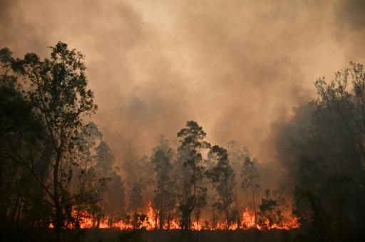 A bushfire rages in Bobin, 300km north of Sydney. The bushfire crisis has forced the cancellation of this week's Rally Australia further up the east coast