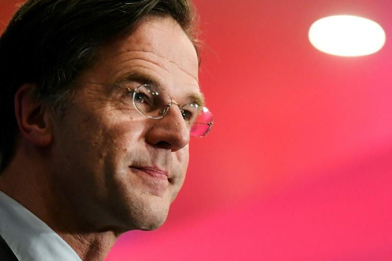 Mark Rutte's VVD party won the legislative elections but there will be a slew of other parties in the new parliament