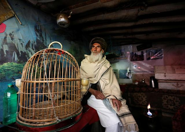 <p>Mohammad Jan, 67, sits beside a cage of partridges in a shop at Ka Faroshi bird market in Kabul, Afghanistan, Jan. 18, 2018. (Photo: Mohammad Ismail/Reuters) </p>