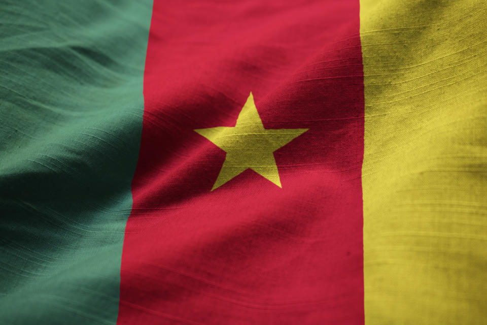 The total value of UK-Cameroon trade was £200m ($272m) in 2019. Above, Cameroon flag. Photo: Getty