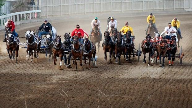 Devin Mitsuing, centre, races his team to the finish line during the chuckwagon races in 2012, which was the 100th anniversary of the Stampede. (Jeff McIntosh/The Canadian Press - image credit)
