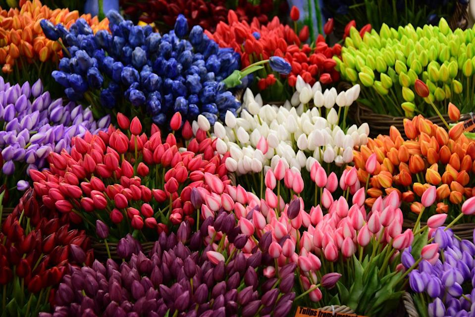 <p>Tulips for sale in Amsterdam</p>
