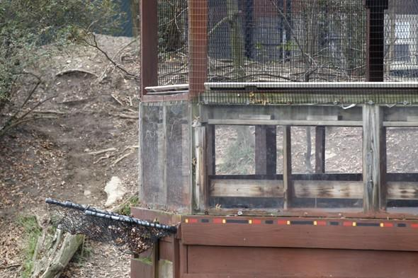 Zoo blames mum for boy being mauled to death