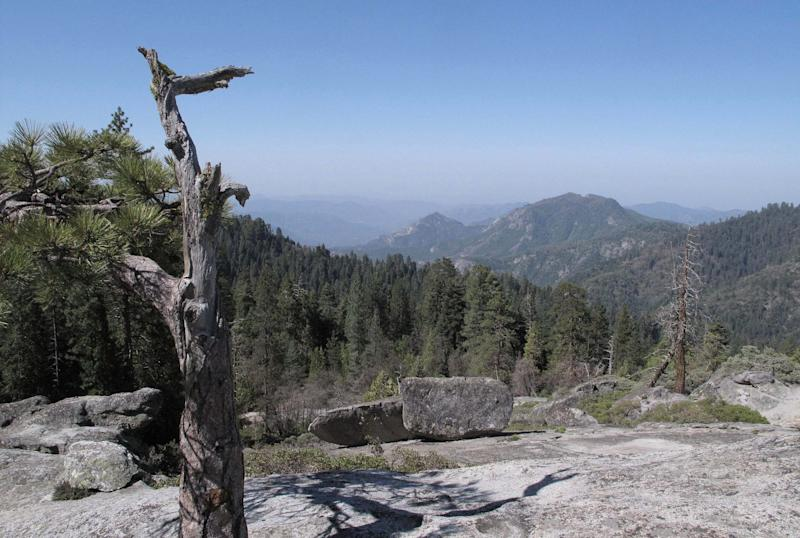 FILE - In this May 11, 2012 file photo, the view from Beetle Rock in Sequoia National Park, Calif., is seen. In parts of California's Sierra Nevada, the incursion of trees is sucking marshy meadows dry. Glaciers are melting into mere ice fields. Wildflowers are blooming earlier. And the optimal temperature zone for Giant Sequoias is predicted to rise several thousand feet higher, leaving existing trees at risk of dying over the next 100 years. As the climate warms, scientists studying one of the largest swaths of wilderness in the Continental U.S. are noting changes across national parks, national forests and 3.7 million acres of federally protected wilderness areas that are a living laboratory. (AP Photo/Tracie Cone, File)