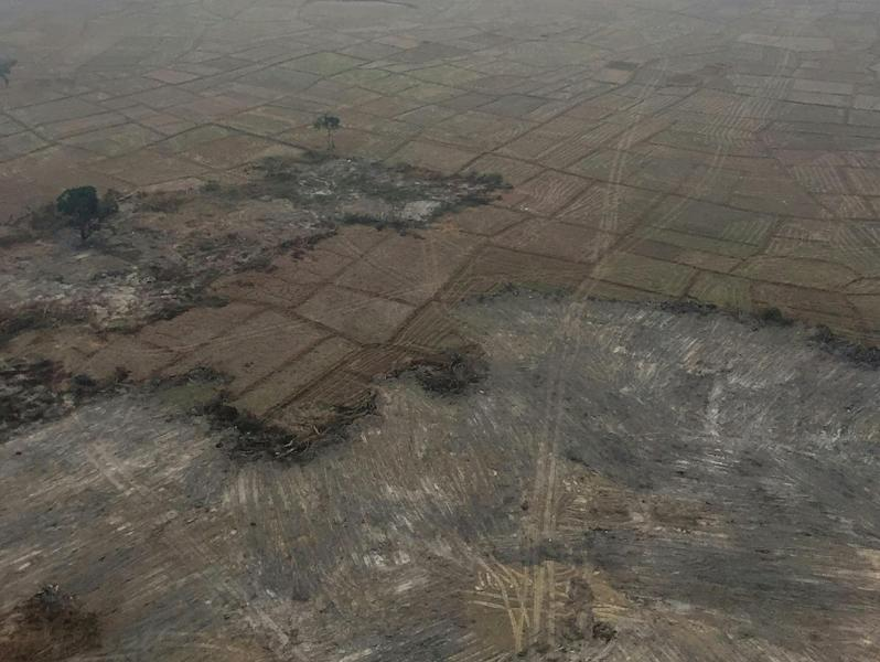 The haunting pictures show a scarred territory with large patches of levelled land (AFP Photo/-)