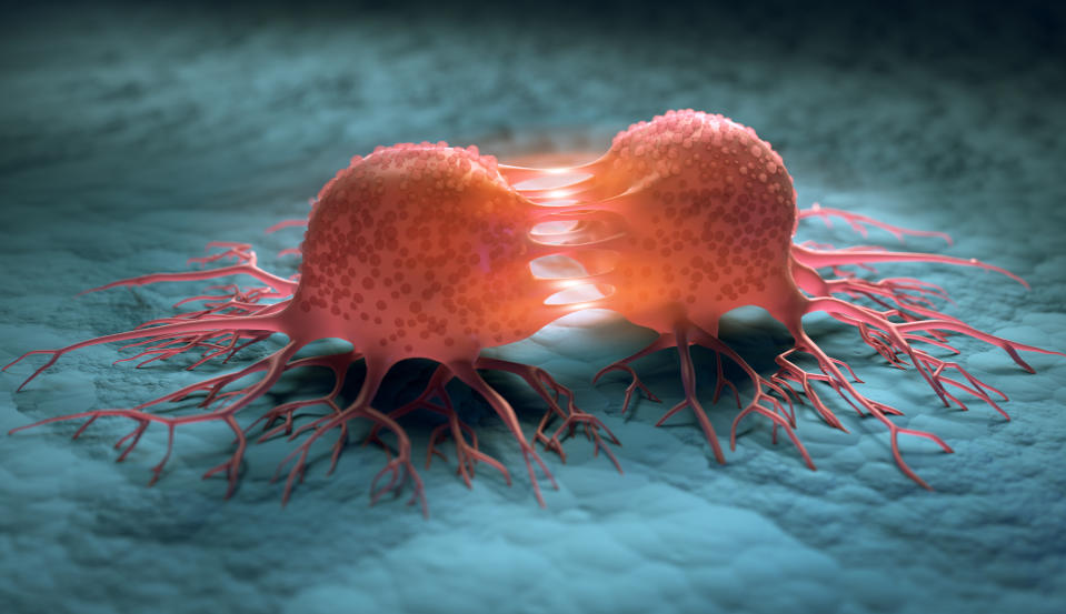 Medical 3D illustration of a dividing cancer cell with a cell surface