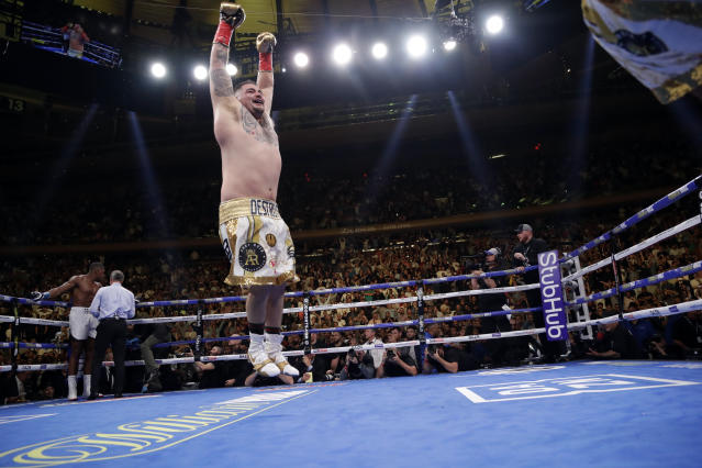 FILE - In this June 1, 2019, file photo, Andy Ruiz celebrates after stopping British boxer Anthony Joshua during the seventh round of a heavyweight championship boxing match in New York. Three months ago in New York, Andy Ruiz scored a massive upset when he took Anthony Joshua's three heavyweight belts. (AP Photo/Frank Franklin II, File)
