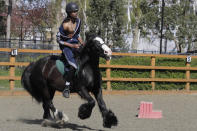 Mikhi Fearon, 17, rides Molly in a riding lesson at Ebony Horse Club in Brixton, south London, Sunday, April 18, 2021. In the midst of south London's hustle and bustle, only a 10-minute walk from a subway station, is a school where children are encouraged to horse around. The Ebony Horse Club provides 140 rides per week to children in the local community offering them the opportunity to learn important life skills along with horseback riding. (AP Photo/Kirsty Wigglesworth)