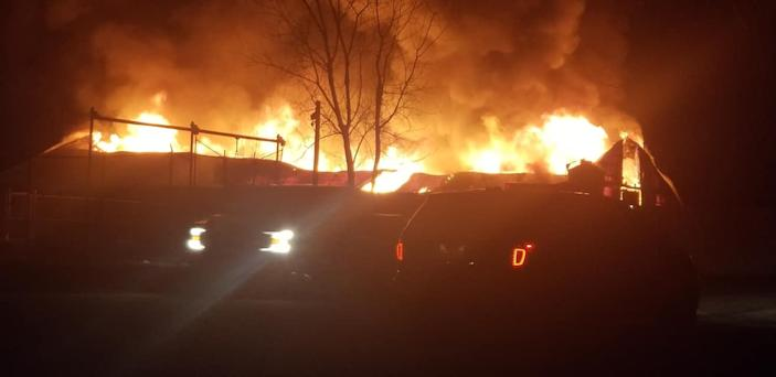 The cause of the barn fire that killed 10 animals has yet to be determined, African Safari Wildlife Park officials said.