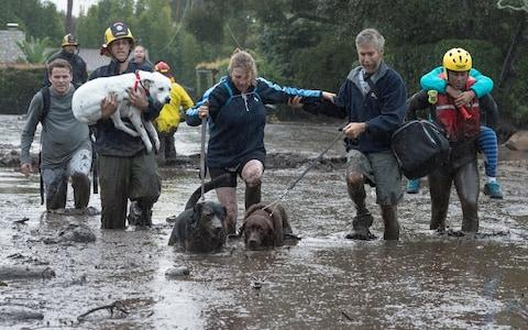 Emergency personnel evacuate local residents and their dogs - Credit: Reuters