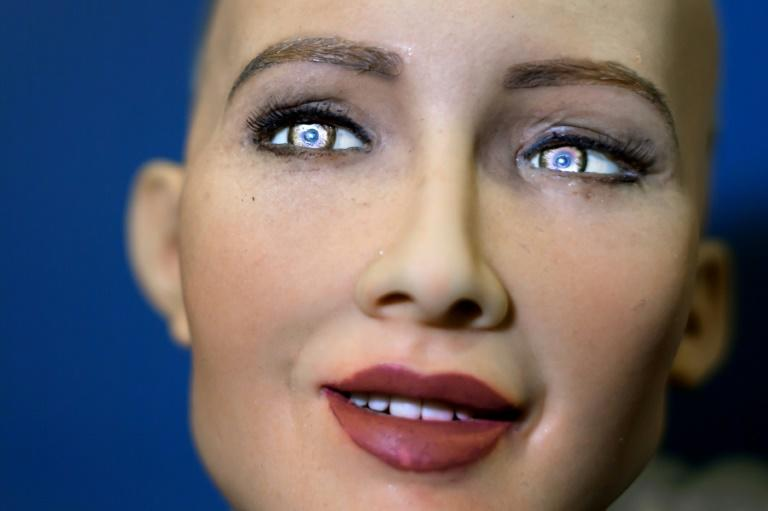 Sophia, a humanoid robot, is the main attraction at a conference on artificial intelligence this week but her technology has raised concerns for future human jobs