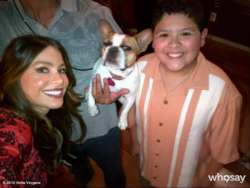 """Sofia and Rico showed off the newest member of the """"Modern Family"""" cast in <a href=""""http://www.whosay.com/sofiavergara/photos/209842"""">this photo</a>. Jay Pritchett's (Ed O'Neil) pet Stella has been replaced by a lookalike pooch. """"The new baby!,"""" Sofia tweeted."""