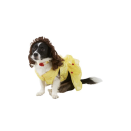 """<p><strong>Rubie's Costume Company</strong></p><p>chewy.com</p><p><strong>$25.13</strong></p><p><a href=""""https://go.redirectingat.com?id=74968X1596630&url=https%3A%2F%2Fwww.chewy.com%2Frubies-costume-company-belle-disney%2Fdp%2F170983&sref=https%3A%2F%2Fwww.oprahdaily.com%2Flife%2Fg28714689%2Ffunny-dog-halloween-costumes%2F"""" rel=""""nofollow noopener"""" target=""""_blank"""" data-ylk=""""slk:Shop Now"""" class=""""link rapid-noclick-resp"""">Shop Now</a></p><p>This <em>Beauty and the Beast</em> gown, collar and wig transform your sweet pup into royalty.</p>"""