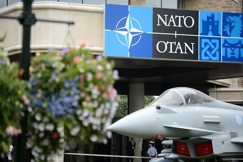 NATO is set to boost its defences in Eastern Europe to counter Russian military might (AFP Photo/Leon Neal)