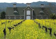 """<p> """"Cathy Corison has been making wine since the '80s,"""" Mahlstede says. """"She is finally, now, over the last few years, getting some well deserved accolades. But for years, her wines have been kind of an unsung hero in the region. The property is on an old 19th-century farm and really lovely.""""<br></p><p>Corison is pioneer of the industry, as the first woman winemaker-proprietor in the valley, and produces some fabulous Cabernet Sauvignons and Gewürztraminer. Three different tastings are offered at <a href=""""https://www.corison.com/"""" rel=""""nofollow noopener"""" target=""""_blank"""" data-ylk=""""slk:the eponymous winery"""" class=""""link rapid-noclick-resp"""">the eponymous winery</a>: a Discover, Library, and Collector's Vertical, depending on the type of tasting and education you're seeking. </p>"""