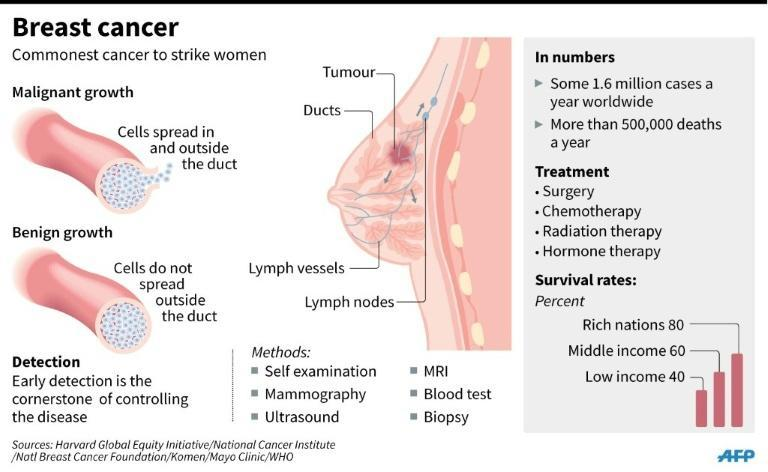 Factfile on breast cancer