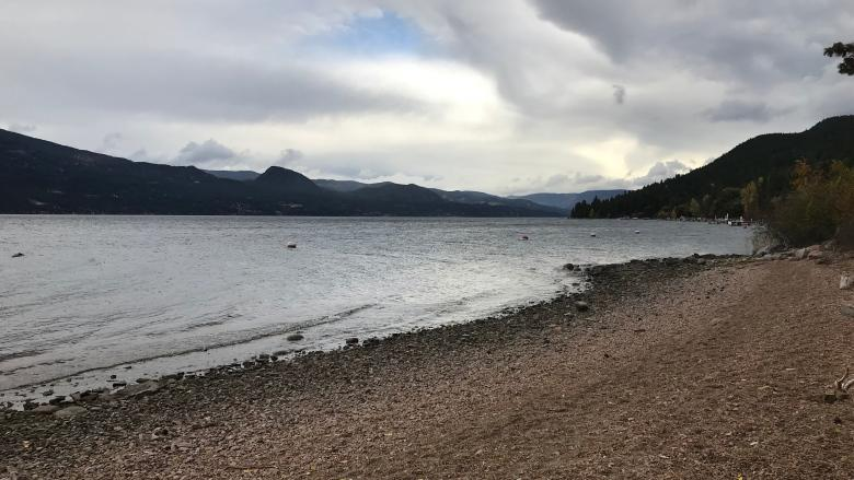 Potential sale of public beach on Okanagan Lake prompts backlash, again
