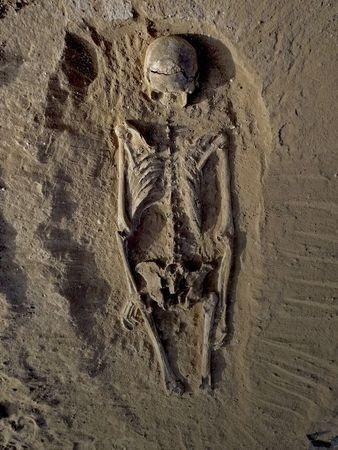 The skeleton of a man, found lying prone in the sediments of a lagoon 30km west of Lake Turkana, Kenya, at a place called Nataruk, is pictured in this undated handout photo obtained by Reuters January 20, 2016. REUTERS/Marta Mirazon Lahr/Cambridge University/Handout via Reuters