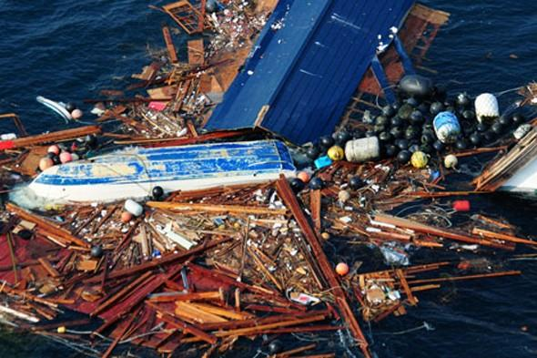 Island of Japanese tsunami debris the size of Texas headed for America