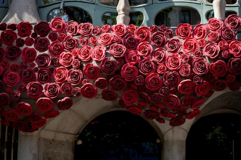 Red roses and books abound in Barcelona for Saint George's day, when by tradition men give women roses and women give men a book