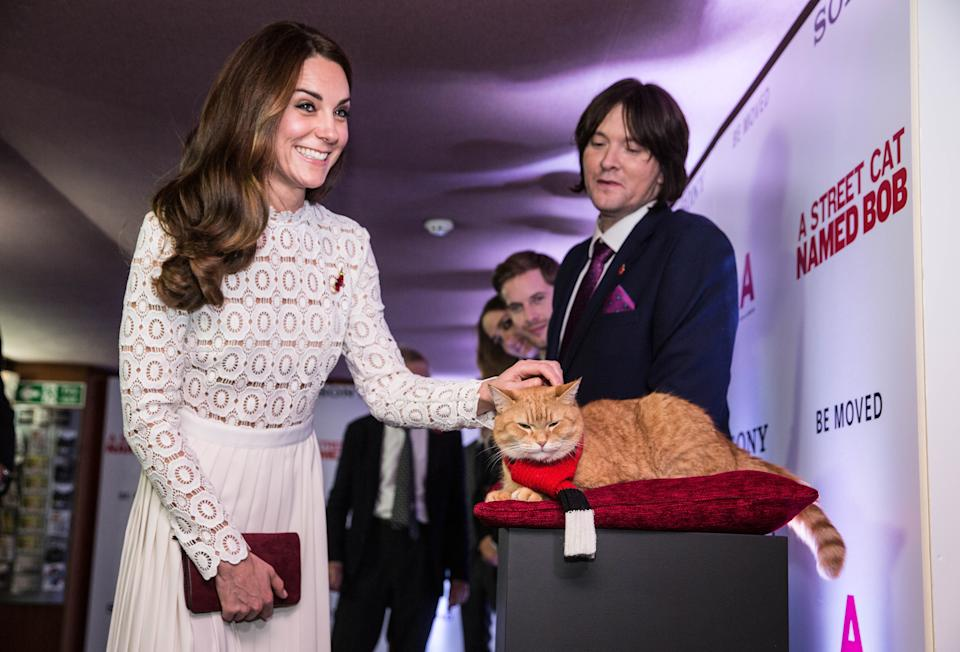 Catherine, The Duchess of Cambridge, Bob and James Bowen at the World Premiere of A Street Cat Named Bob. (Getty Images)