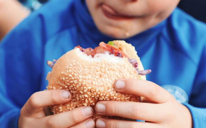 Boy Holding Burger - Drazen Stader/EyeEm/Getty Images