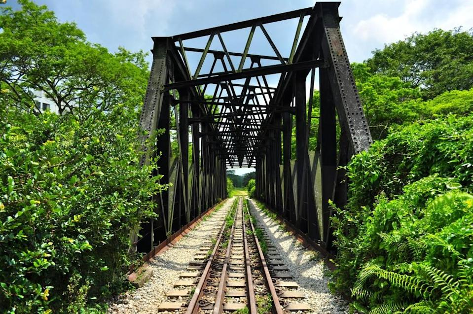 Bukit Timah Rail Corridor on a bright afternoon