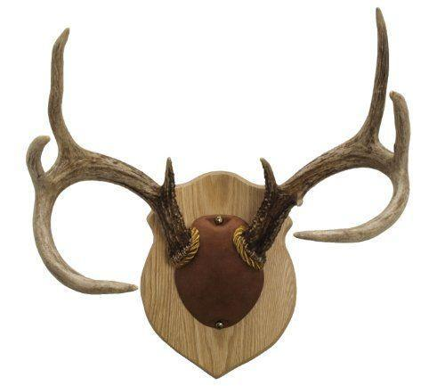 """<p><strong>Walnut Hollow Country</strong></p><p>amazon.com</p><p><strong>$24.78</strong></p><p><a href=""""https://www.amazon.com/dp/B005KP6WWA?tag=syn-yahoo-20&ascsubtag=%5Bartid%7C10050.g.23554474%5Bsrc%7Cyahoo-us"""" rel=""""nofollow noopener"""" target=""""_blank"""" data-ylk=""""slk:Shop Now"""" class=""""link rapid-noclick-resp"""">Shop Now</a></p><p>This kit contains everything needed to mount and display harvested deer antlers, including a solid oak crest plaque.</p>"""