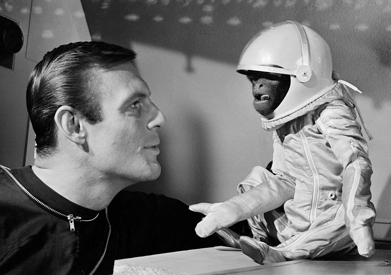 "<p>His own space suit, with oxygen tank, doesn't make Barney the monkey any happier as he and actor Adam West view the situation in their space capsule in Hollywood on Jan. 24, 1964. Barney, a South American woolly monkey, is blasted into space with West, as an astronaut, in a new movie, ""Robinson Crusoe On Mars."" ( Photo: AP) </p>"