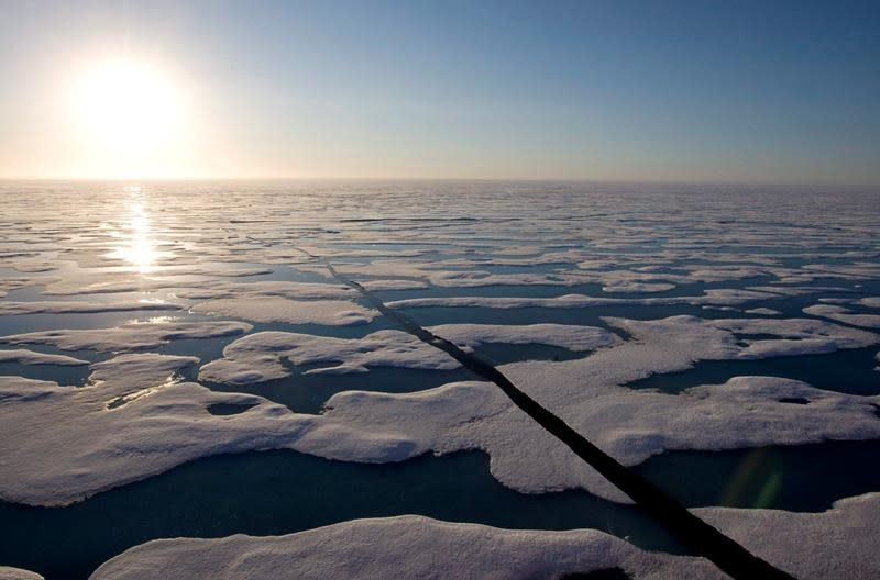 More shippers and shipping companies promise to avoid Arctic routes