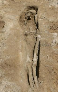 A human skeleton at an excavation site of a graveyard dating back to the Phoenician period, around 600 B.C., is seen in Tyre, southern Lebanon May 15, 2012.