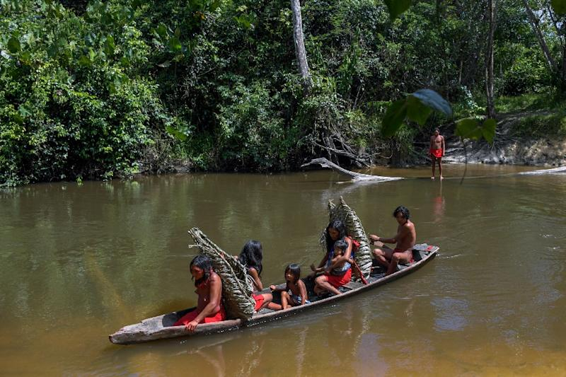 "New ""guiding principles"" for collaboration endorsed by three dozen mostly tropical provinces and states across nine countries bolster indigenous rights to land, self-governance and finance earmarked for safeguarding forests (AFP Photo/Apu Gomes)"