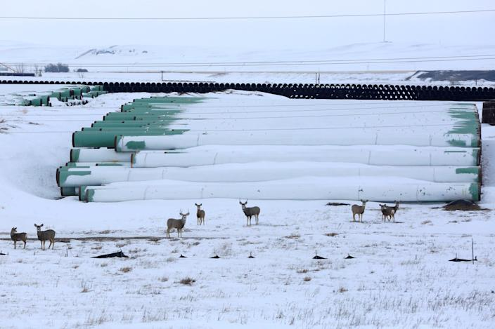 <p>A depot used to store pipes for Transcanada Corp's planned Keystone XL oil pipeline is seen in Gascoyne</p> (Reuters)