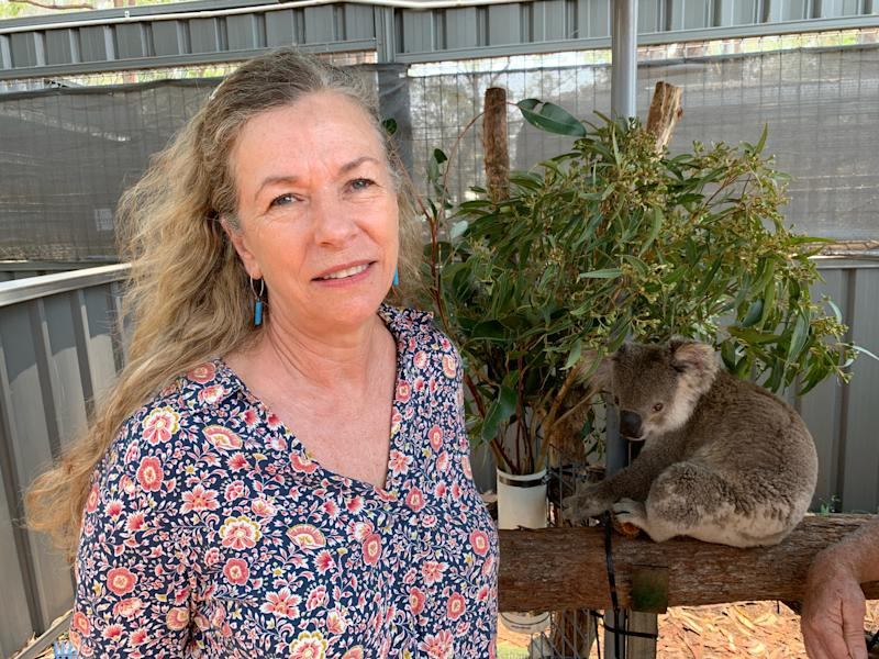 Toni Doherty has been praised for her quick actions in trying to save the koala. Source: Yahoo/Michael Dahlstrom