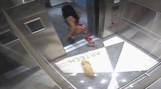 Despite the abuse it received, the loyal pet followed the woman out of the lift. Source: WPBF US