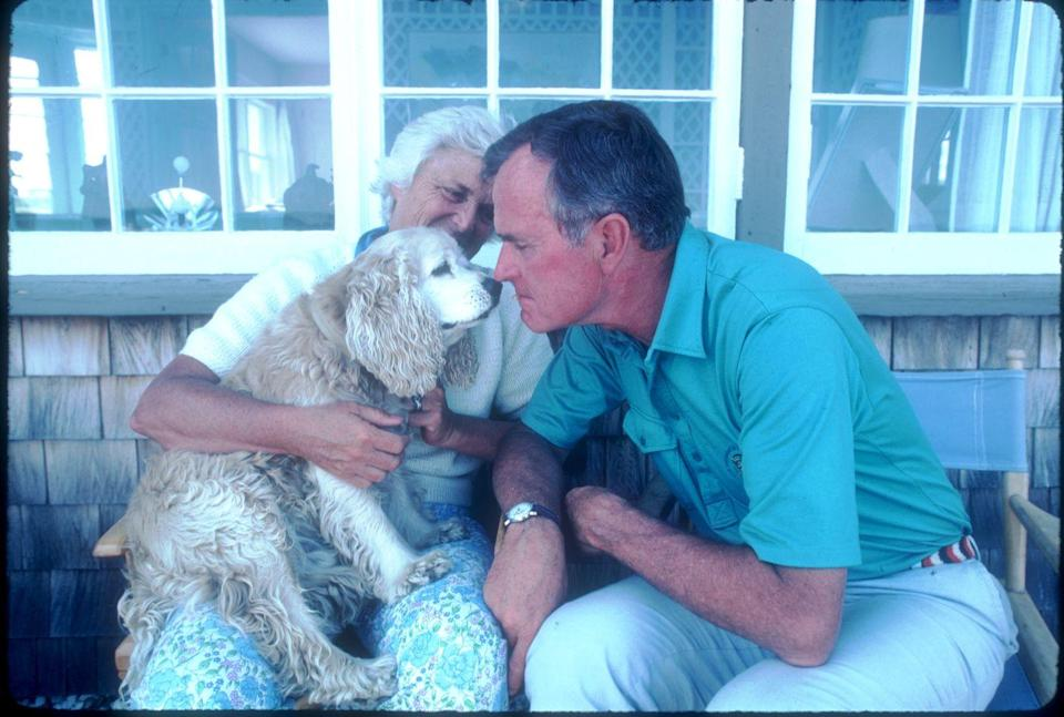 <p>In 1983, President George H. W. Bush nuzzled noses with his dog, Fred, while on vacation at his home in Kennebunkport, Maine, with his wife Barbara.</p>