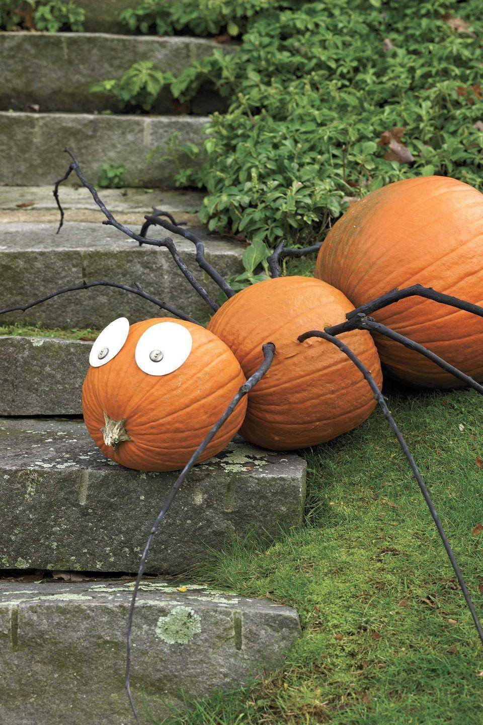 """<p>Turn three gourds on their side to make this spider. Button eyes and branch legs complete the creepy crawly creature.</p><p><strong><em><a href=""""https://www.womansday.com/home/crafts-projects/how-to/a6030/craft-project-spindly-spider-123878/"""" rel=""""nofollow noopener"""" target=""""_blank"""" data-ylk=""""slk:Get the Spindly Spider tutorial."""" class=""""link rapid-noclick-resp"""">Get the Spindly Spider tutorial.</a></em></strong></p>"""