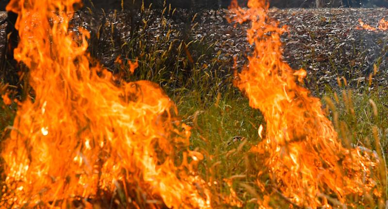 Fire shown as Victorian man dies in bushfire accident.
