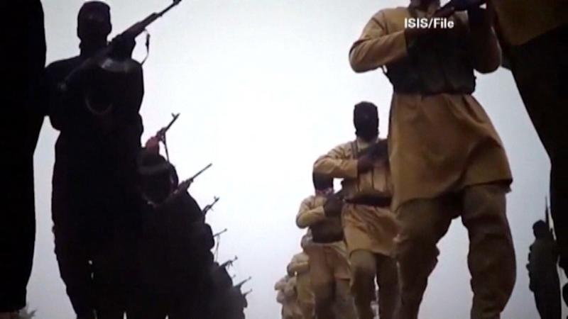 Iraq: 'Terrorists' seize ex-chemical weapons site