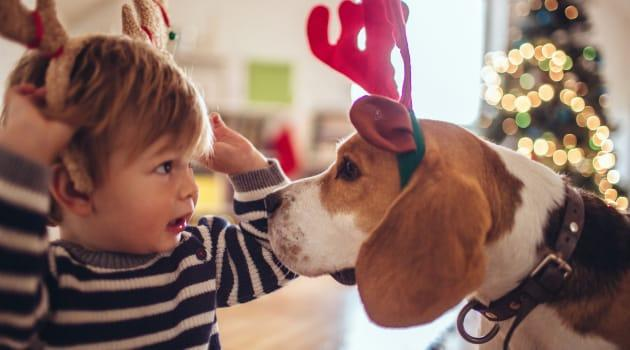 Moms, Pets Top Holiday Gift Lists