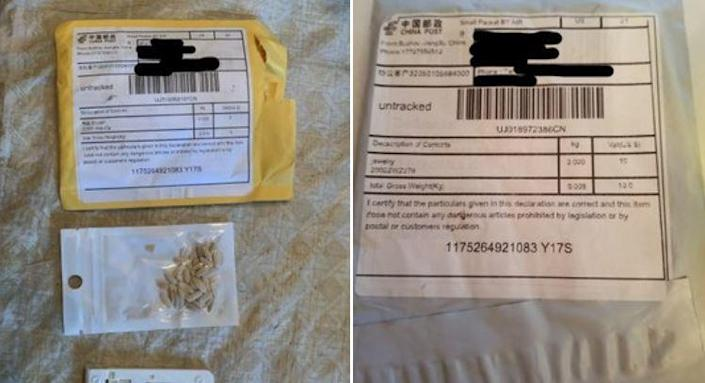 Images tweeted by the Maryland Department of Agriculture show packets of unidentified seeds received in the mail, unsolicited, by state residents, apparently from China. / Credit: Maryland Department of Agriculture