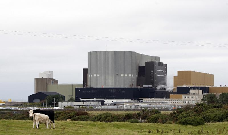 Hitachi had planned to build a new plant next to the decommissioned Wylfa Nuclear Power Station (pictured) (AFP Photo/PAUL ELLIS)