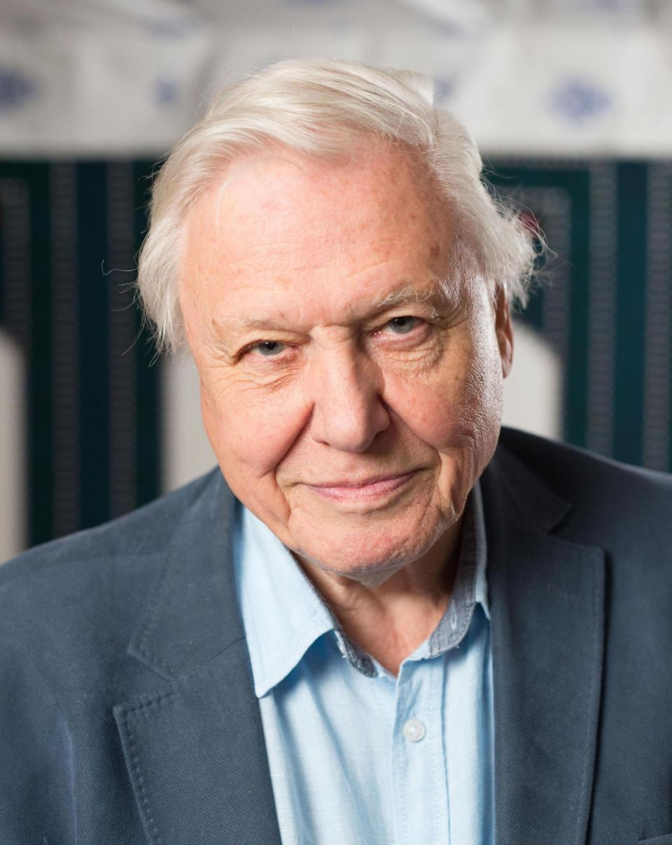 <p>The broadcaster made what is thought to be his first intervention into politics north of the border to ask MSPs to 'take the necessary action'.</p>