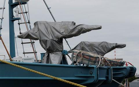 Whaling vessels ready to be deployed in Kushiro on Sunday - Credit: REUTERS/Kim Kyung-Hoon