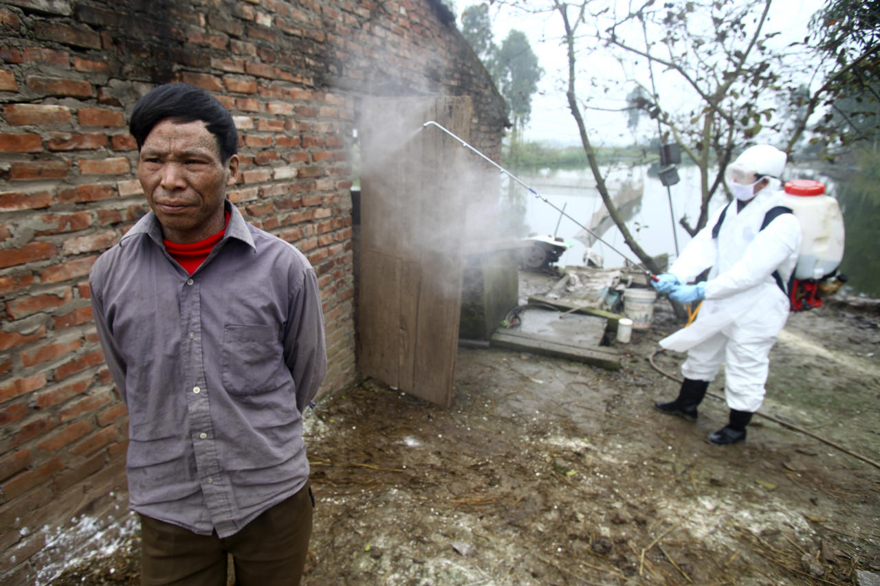 In this photo taken on Tuesday, Feb. 14, 2012, Nguyen Quang Duong, left, the owner of a poultry farm in Nhat Tan commune, Kim Bang district, Ha Nam province, Vietnam, stands still as a health worker wearing a protective gear sprays disinfectant at Duong's farm where a suspected outbreak of the H5N1 bird flu virus among ducks was discovered in early February 2012. Some 2,400 ducks from Duong's farm were slaughtered to prevent the spread of the virus. (AP Photo/Na Son Nguyen)