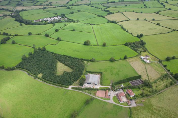 A heart-shaped meadow, created by farmer Winston Howes as a tribute to his late wife, can be seen from the air near Wickwar, South Gloucestershire. The point of the heart points towards Wotton Hill, where his wife was born. (SWNS.com)