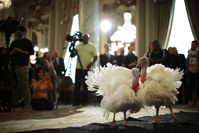 President Donald Trump will pardon two turkeys on Tuesday at the White House.